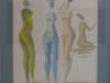 carybe-nus-femininos-1