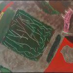 Siron Franco, Homem máquina /1971,  acrílico s/ tela, 60 x 70 cm